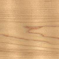 Hard maple
